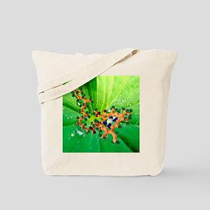 Chlorophyll molecule - Tote Bag
