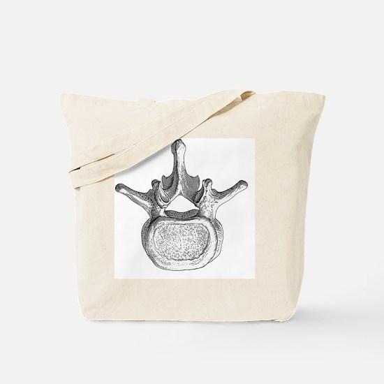 Spinal vertebra - Tote Bag