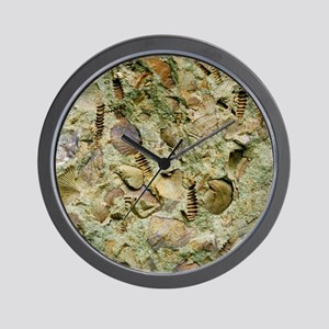 A mixed assemblage of fossils - Wall Clock