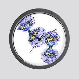 Cell division - Wall Clock