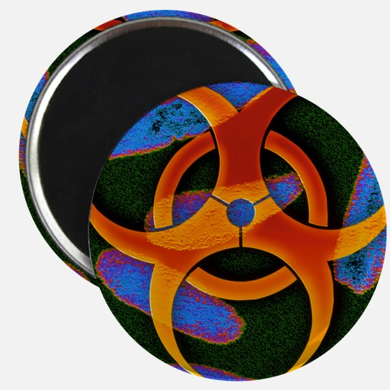 Anthrax bacteria and biohazard symbol - Magnet
