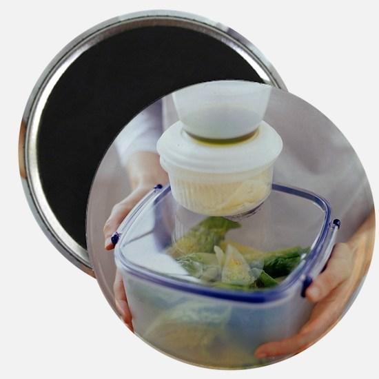 Salad ingredients - Magnet