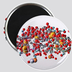 Insulin molecule, computer artwork - 2.25