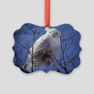 Snowy White Owl Picture Ornament