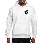 Baptist Hooded Sweatshirt