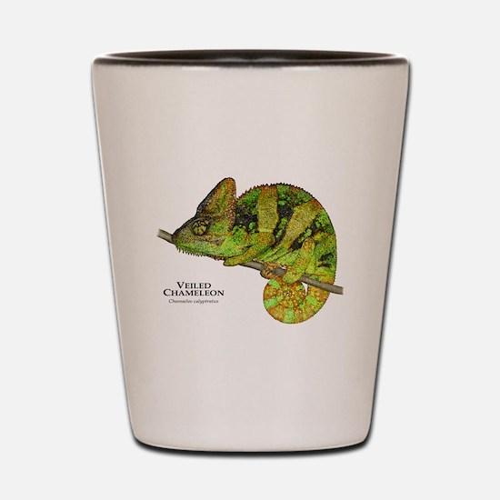 Veiled Chameleon Shot Glass