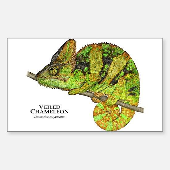 Veiled Chameleon Sticker (Rectangle)