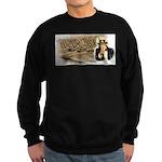 bill of rights 2nd admend1 lp Sweatshirt