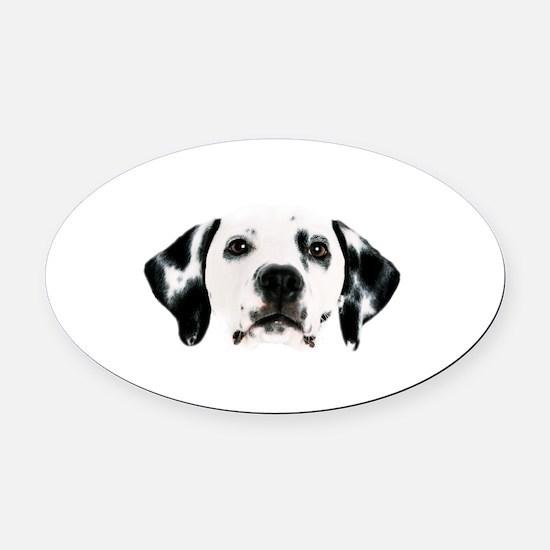 Dalmatian Face Oval Car Magnet