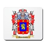 Banishevitz Mousepad