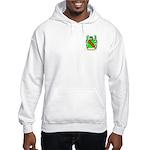 Banfill Hooded Sweatshirt