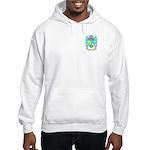 Bandner Hooded Sweatshirt