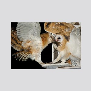 Barn owls feeding on a rat - Rectangle Magnet