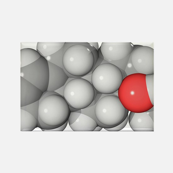 Cortisol hormone molecule - Rectangle Magnet