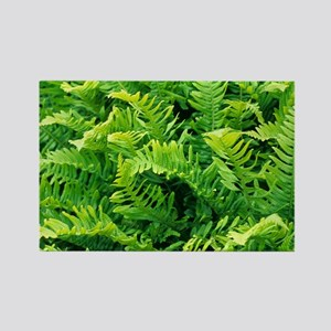 Fern leaves - Rectangle Magnet
