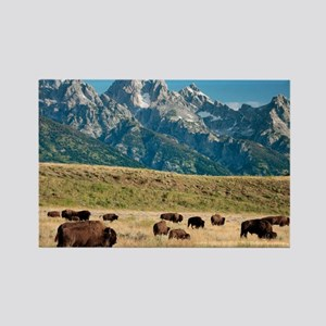 Herd of American Bison - Rectangle Magnet