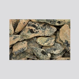 Lichen-covered rocks - Rectangle Magnet