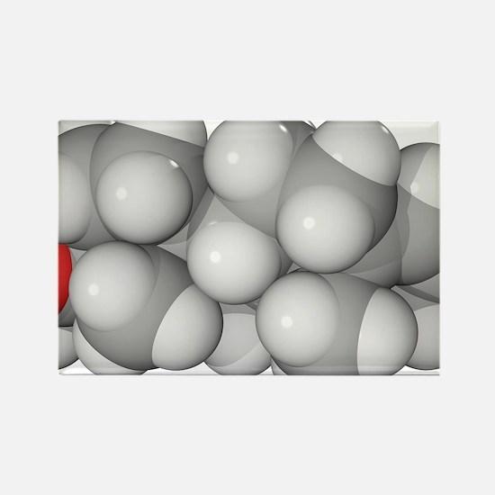 model - Rectangle Magnet