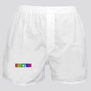 ERECTION RAINBOW TEXT Boxer Shorts