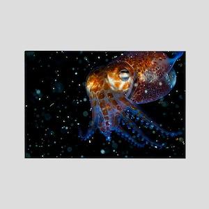 Atlantic bobtail squid - Rectangle Magnet