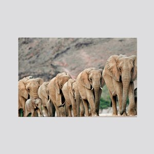 Desert-adapted elephants - Rectangle Magnet
