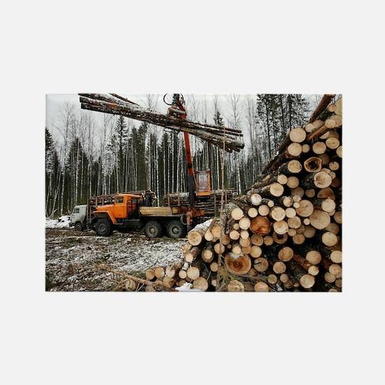 Logging - Rectangle Magnet