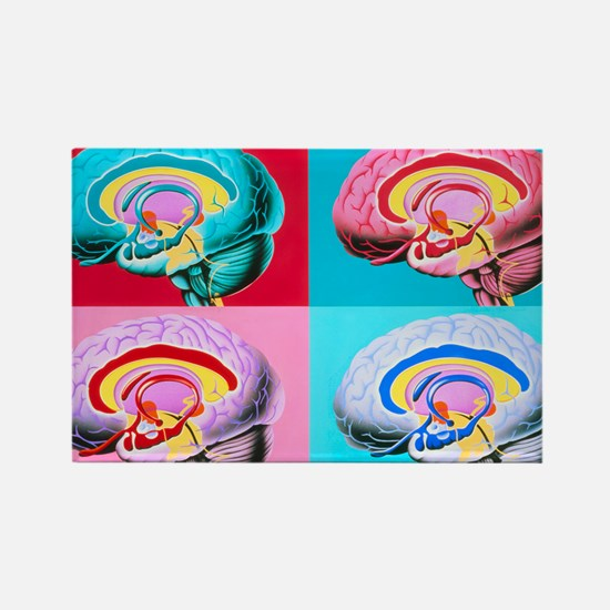 tem of the brain - Rectangle Magnet