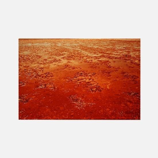 Mud on Mars - Rectangle Magnet