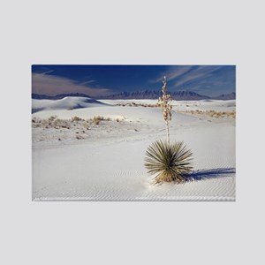 Soaptree yucca (Yucca elata) - Rectangle Magnet