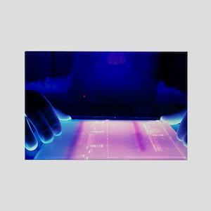 DNA electrophoresis - Rectangle Magnet