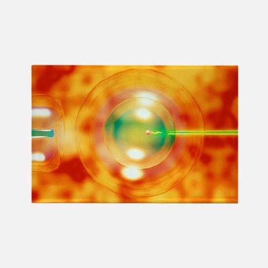 Vitro fertilisation - Rectangle Magnet