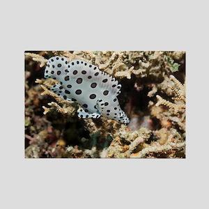 Barramundi cod - Rectangle Magnet