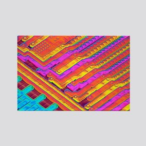Microchip surface, SEM - Rectangle Magnet