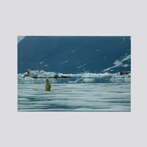 Polar bear - Rectangle Magnet
