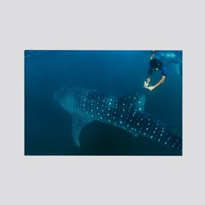 Whale shark and snorkeler - Rectangle Magnet