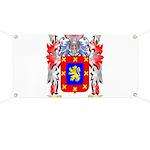 Banasevich Banner