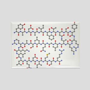 olecule - Rectangle Magnet (10 pk)