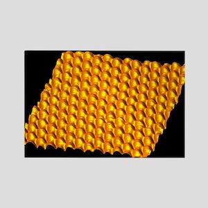 TM - Rectangle Magnet (10 pk)
