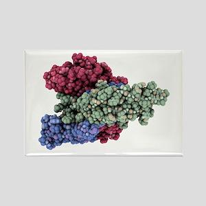 mone molecule - Rectangle Magnet (10 pk)