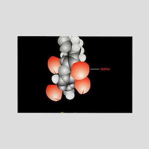 ule - Rectangle Magnet (10 pk)