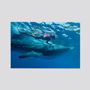 Whale shark and diver - Rectangle Magnet (10 pk)