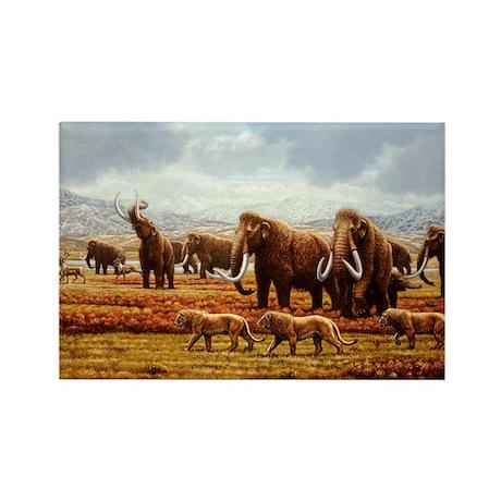 Woolly mammoths - Rectangle Magnet (10 pk)