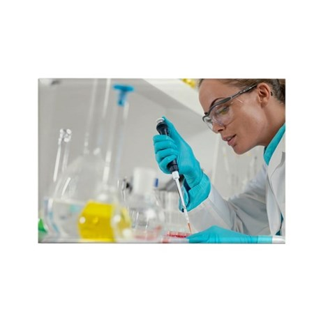 Biological research - Rectangle Magnet (100 pk)
