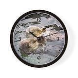 Otter Basic Clocks