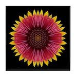 Galliardia 'Arizona Sun' Tile Coaster