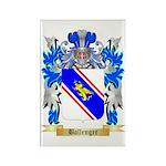 Ballenger Rectangle Magnet (100 pack)