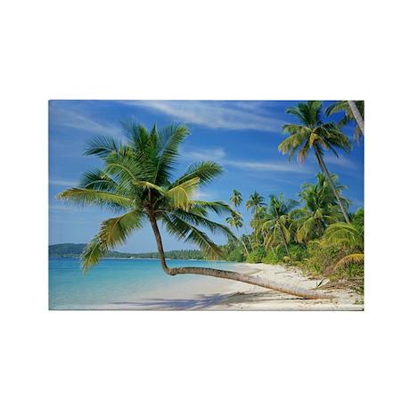 Tropical beach - Rectangle Magnet (100 pk)