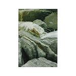 Pretty Rocks Rectangle Magnet (100 pack)
