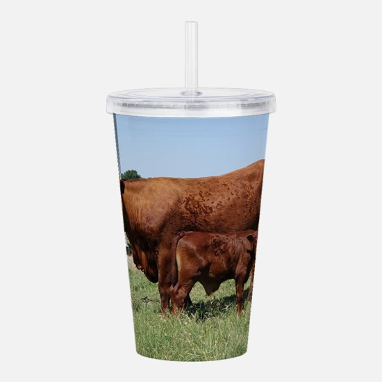 Beefmaster Cow And Cal Acrylic Double-wall Tumbler