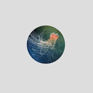 Lion's mane jellyfish - Mini Button